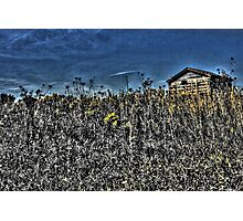 Unearthly Shed on the Illinois Tallgrass Prairie Photographic Print