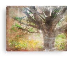 Shroud of Mystery Canvas Print