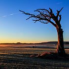 A Tree, Taking A Bough. by Wrayzo
