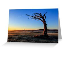 A Tree, Taking A Bough. Greeting Card
