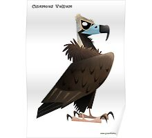Cinereous Vulture caricature Poster