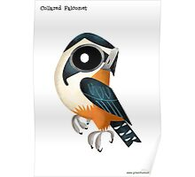 Collared Falconet caricature Poster