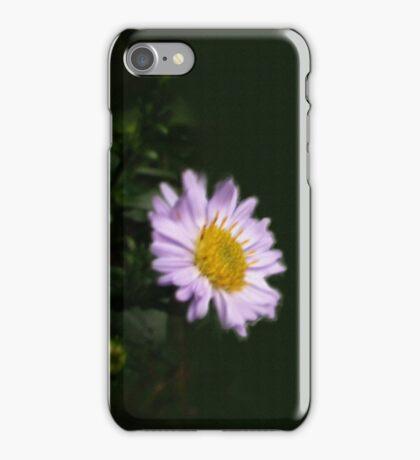 MICHAELMAS DAISY as iPhone Case iPhone Case/Skin