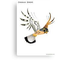 Common Kestrel Hunting caricature Canvas Print