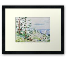 Norfolk Pines, Bucks Point Framed Print