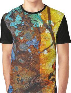 Lichen Rainbow Graphic T-Shirt