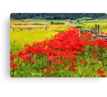 Red Spider Lilies Vivid Rice Field Rural Painterly Canvas Print