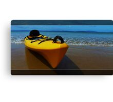 Flying on water Canvas Print