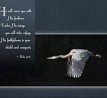 Psalm 91:4 - Greeting Card by Tracy Friesen
