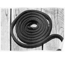 Dock Rope 2 Black and White Poster
