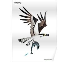Osprey caricature Poster