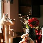 Still Life with Teddy and a Cat by Nadya Johnson