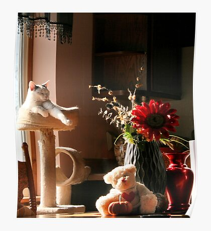 Still Life with Teddy and a Cat Poster