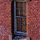 The Window without Pane by Sherene Clow