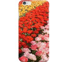 Tulip stripes iPhone Case/Skin