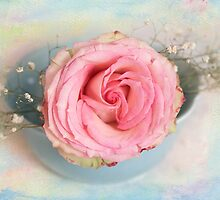 Single Pink Rose in a pastel blue bowl by carolynrauh