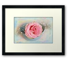 Single Pink Rose in a pastel blue bowl Framed Print
