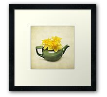 Dreaming About Daffodils  Framed Print
