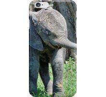 YES I'M DOING THE BABY ELEPHANT WALK - THE AFRICAN ELEPHANT – Loxodonta Africana iPhone Case/Skin