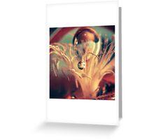 Gravitate Greeting Card