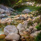 Rock Pool by Gary  Davey (Jordy)