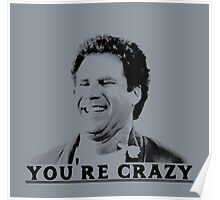You're Crazy Poster