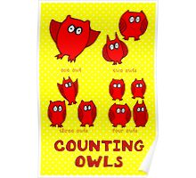 Nits for Kids - Counting Owls Poster