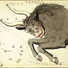 Zodiac Signs: Taurus by Vintage Works