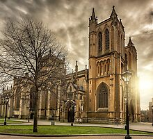 Bristol Cathedral by Tim Pursall