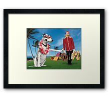Zelda's Agility Competition Day Framed Print