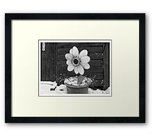 Flowers in the Snowstorm Framed Print