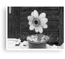 Flowers in the Snowstorm Canvas Print