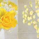 Mellow Yellow by Lyn  Randle