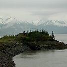 Alaska Shoreline by Margaret  Shark