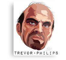 GTA V: Trevor Metal Print