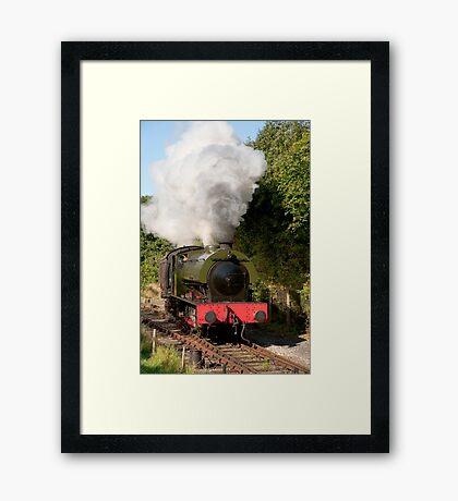 The saddle tank locomotive Walkden on the Ribble Steam Railway. Framed Print