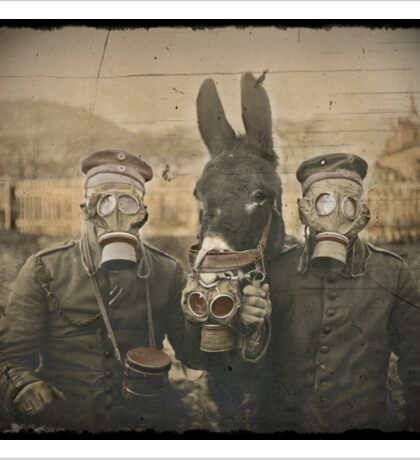 Soldiers and Mule Wear Gas Masks Sticker