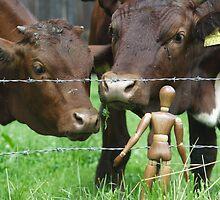 Amazed Cows by Mythos57