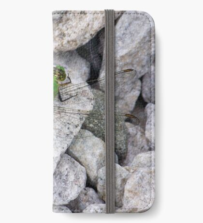 Green Dragon iPhone Wallet/Case/Skin