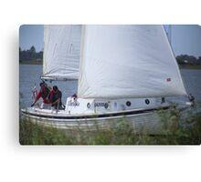 Terrible Sailing at Goolwa Canvas Print