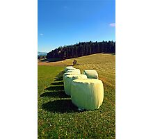 Marshmallows for cows | landscape photography Photographic Print