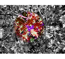 Feeling Festive - Red Photographic Print