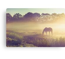 Misty Morning on the Dutch Field Metal Print