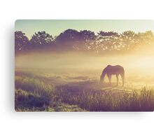 Misty Morning on the Dutch Field Canvas Print