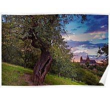 Sunset at Petrin Park. Prague Poster