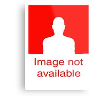 Image Not available: Red Metal Print