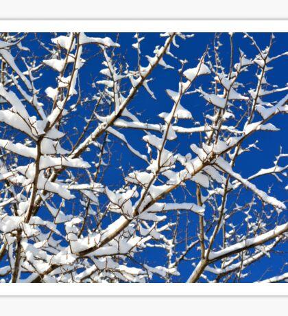 First Snow Sticker