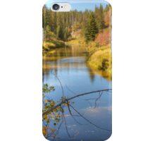 Autumn Splendor iPhone Case/Skin