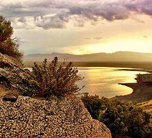 After the Rain - Popcorn Rock at Pyramid Lake by LonnieMassotty