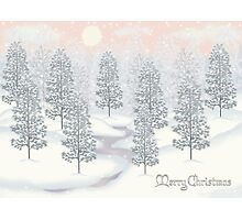 Snowy Day Winter Scene Merry Christmas Photographic Print